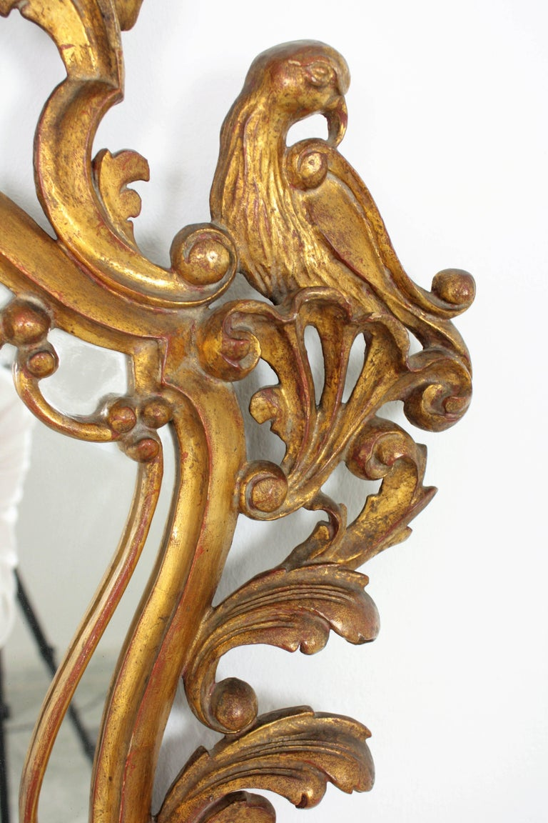 Late 19th Century Spanish Rococo Style Carved Gold Leaf Giltwood Mirror For Sale 5