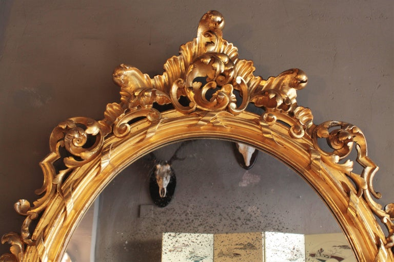 Gesso Huge Palatial French 19th Century Rococo Carved Gold Leaf Giltwood Oval Mirror For Sale