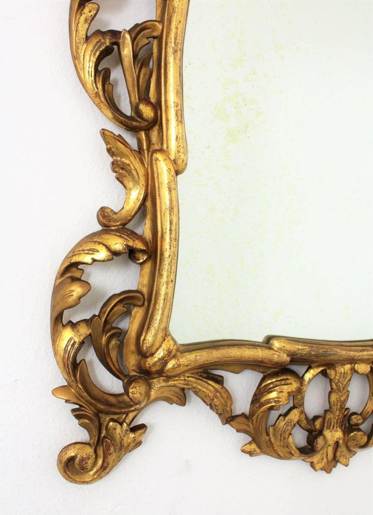 19th Century Spanish Rococo Style Finely Carved Gold Leaf Giltwood Mirror For Sale 1