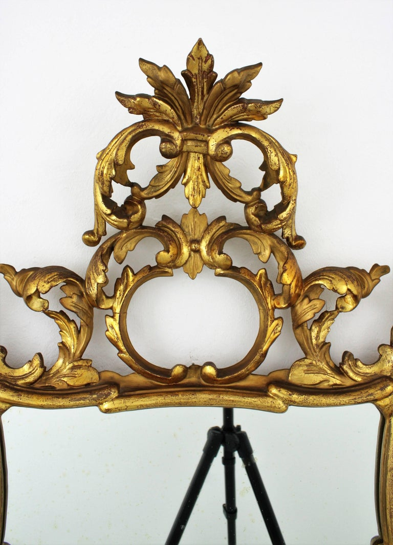 19th Century Spanish Rococo Style Finely Carved Gold Leaf Giltwood Mirror For Sale 5