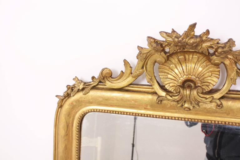 Antique French 19th Century Louis Philippe Gold Leaf Giltwood Coquille Mirror 7