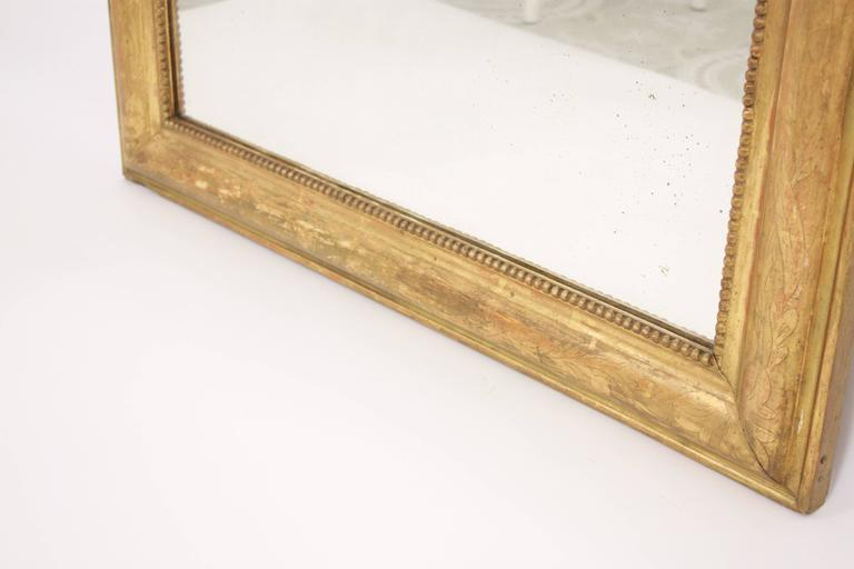 Antique French 19th Century Louis Philippe Gold Leaf Giltwood Coquille Mirror 8
