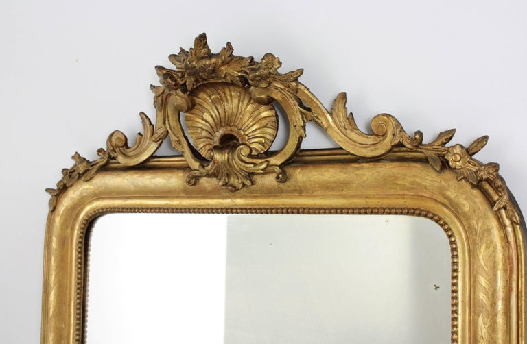 Antique French 19th Century Louis Philippe Gold Leaf Giltwood Coquille Mirror 3