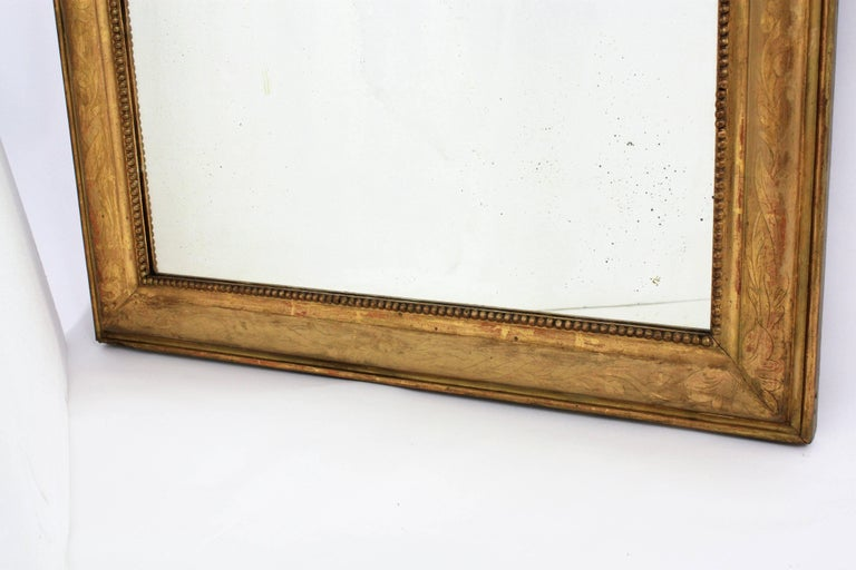 Antique French 19th Century Louis Philippe Gold Leaf Giltwood Coquille Mirror 9