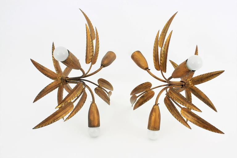 Set of Two Leaf Design Gilt Iron Ceiling Sconces and Wall Sconce, Spain, 1960s For Sale 1