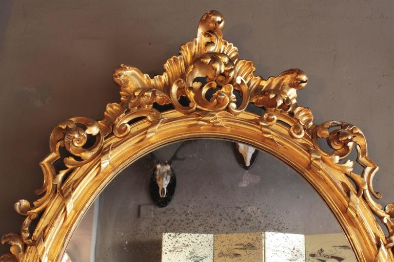 Huge Palatial French 19th Century Rococo Carved Gold Leaf Giltwood Oval Mirror 4