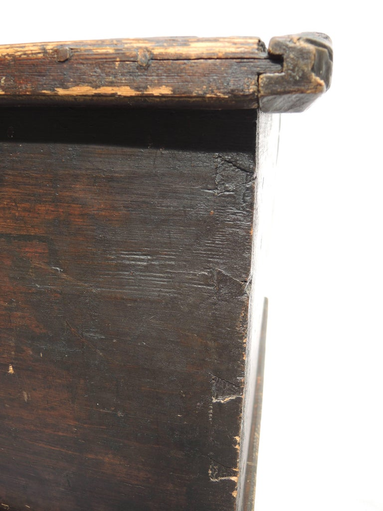 Early 19th Century Swedish Painted Trunk For Sale 4