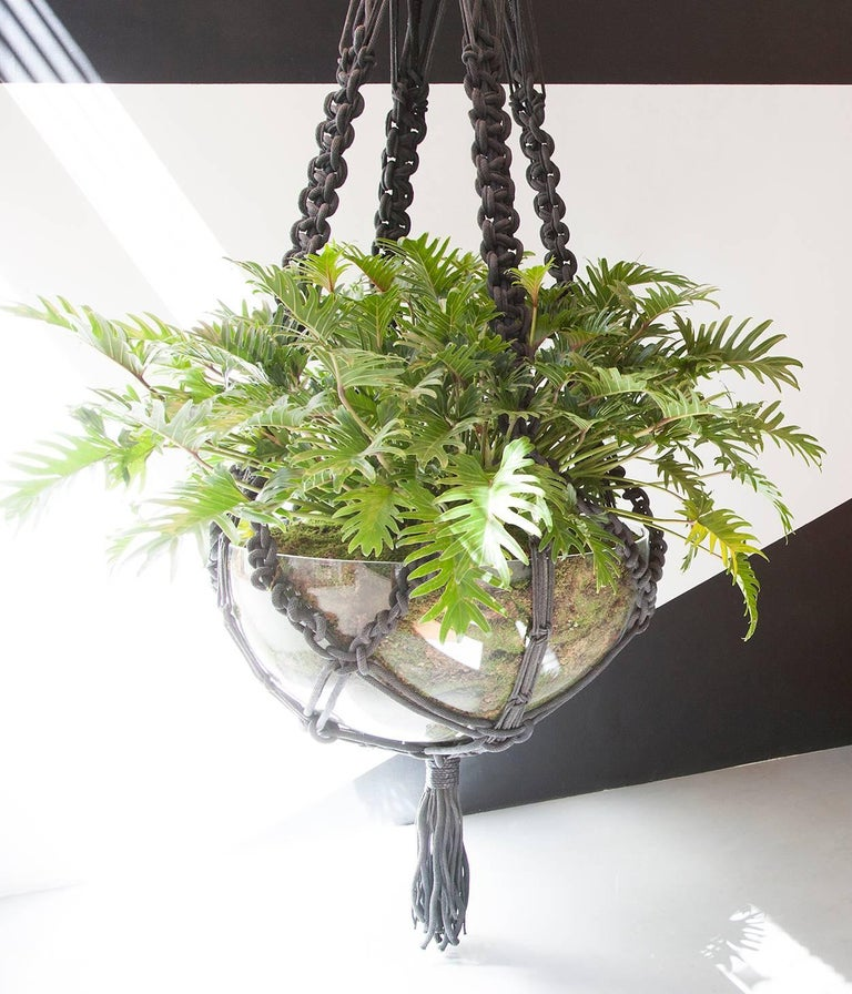 macrame plant hanger for sale custom macrame plant hanger for sale at 1stdibs 832