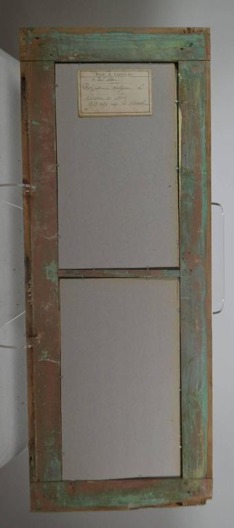 Painted Herbiers Framed in Antique Window Frames For Sale