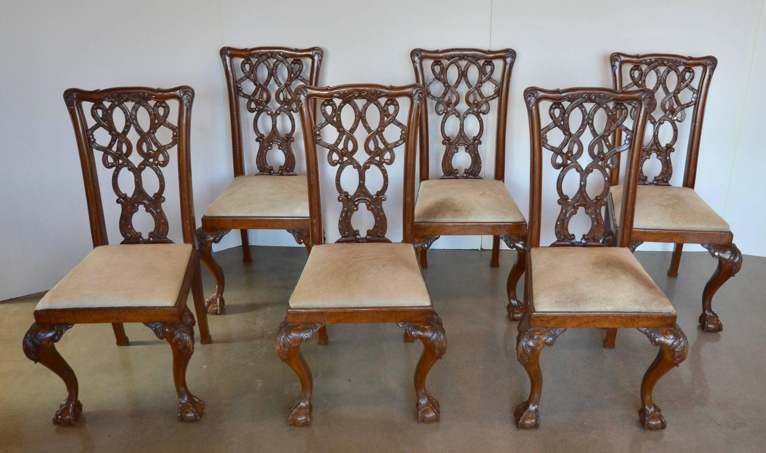 mahogany chippendale dining chairs in cowhide for sale at 1stdibs