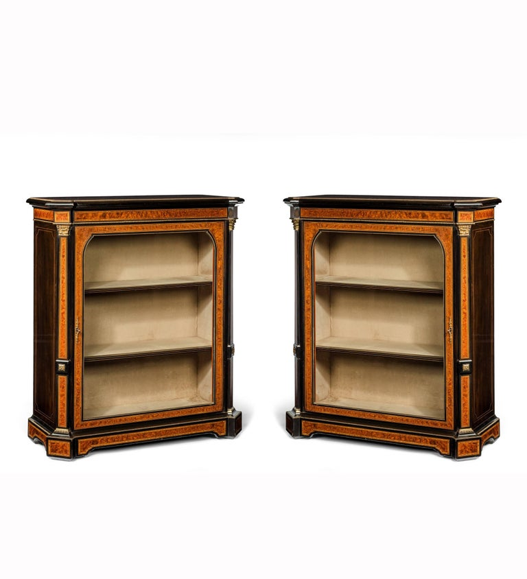 Fine Pair of 19th Century Antique Pier Cabinets For Sale 4