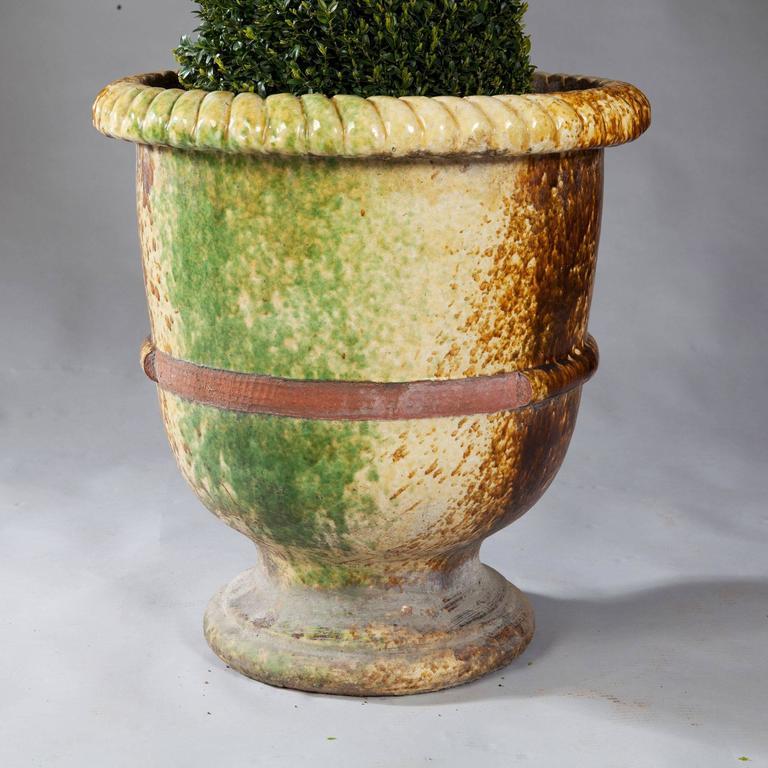 Pair Of Italian Large Glazed Terracotta Garden Pots 3