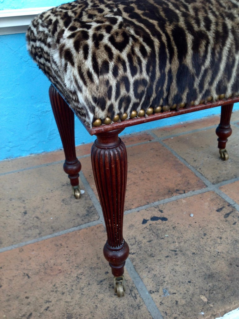19th Century English Lynx Covered Bench For Sale 4