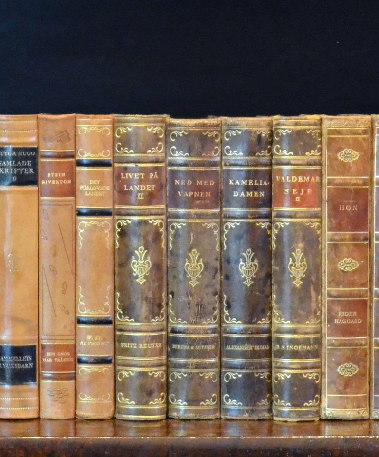 Embossed Meter of 20th Century Leather Bound Books, Series 15/16 For Sale