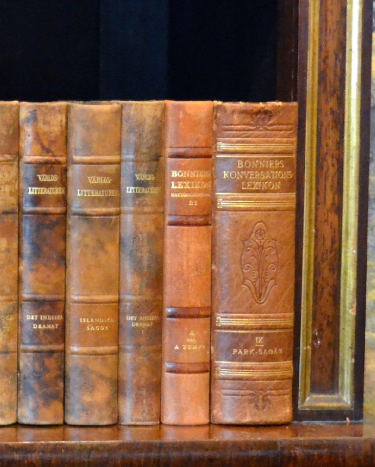 Meter of 20th Century Leather Bound Books, Series 15/16 For Sale 1