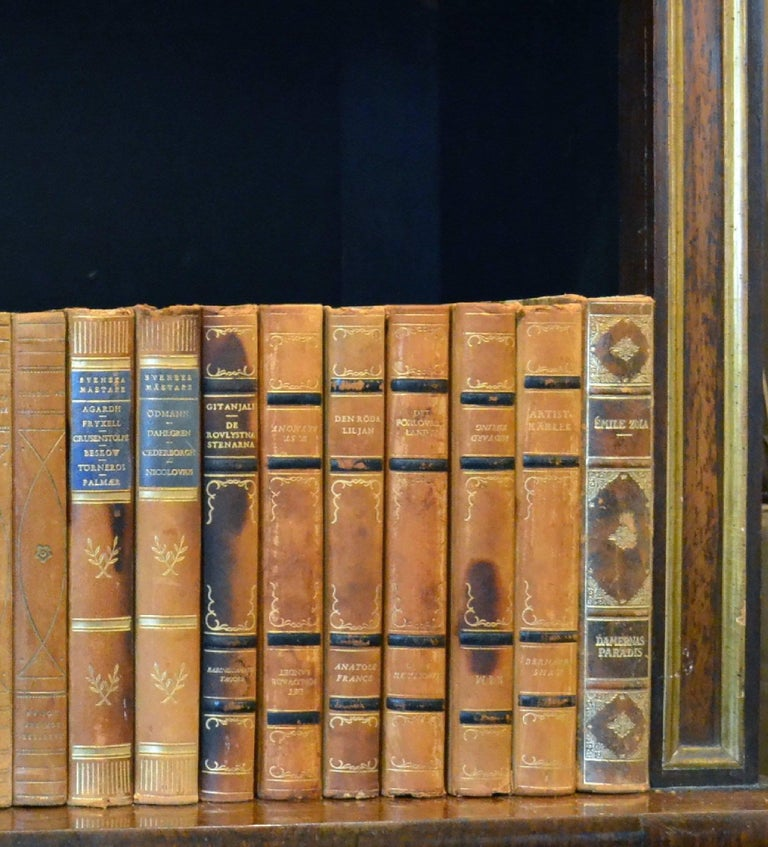 Meter of Early 20th Century Leather Bound Books, Series 33 For Sale 1