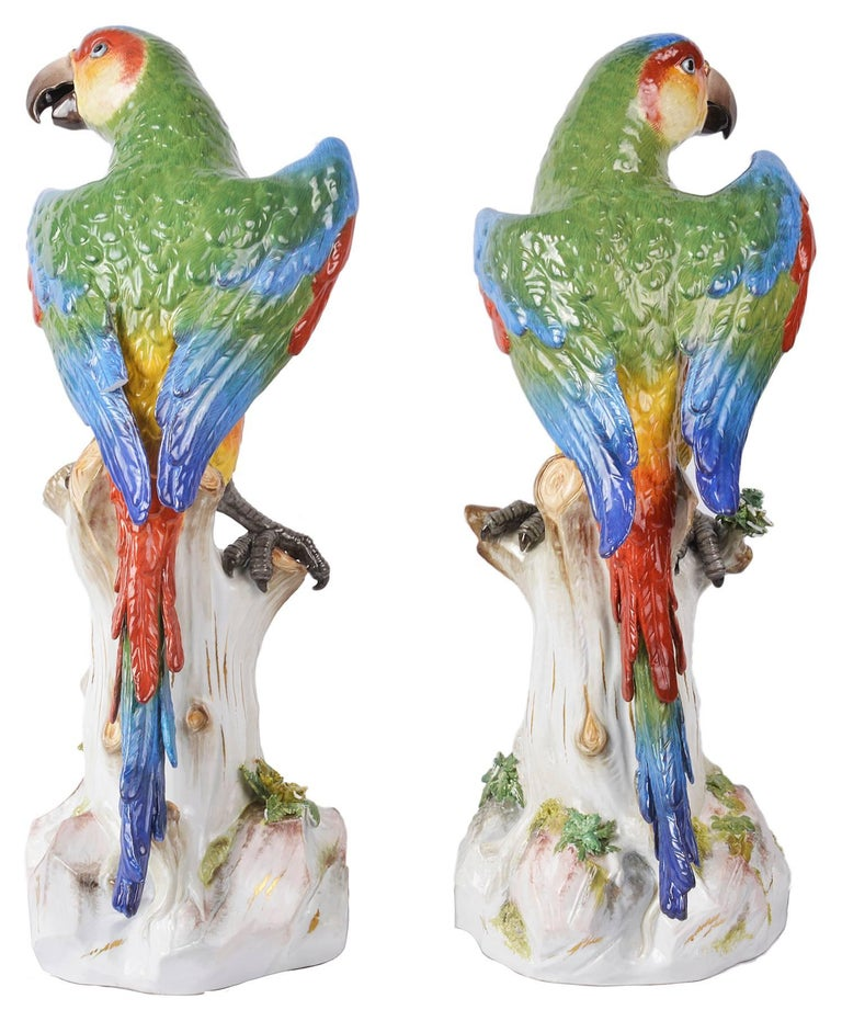 A very impressive pair of 19th century Meissen parrots, each decorated in wonderful bold colors and perched on tree stumps, one with cherries in its claw.