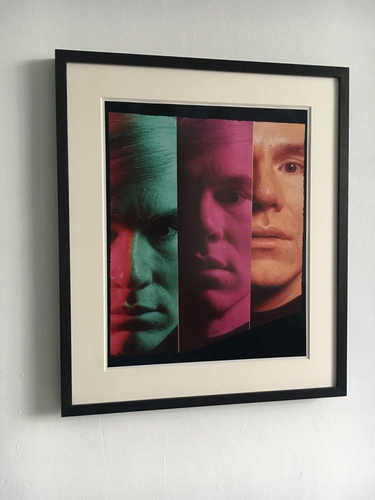 Andy Warhol Portraits by Philippe Halsman, Set of Four 10