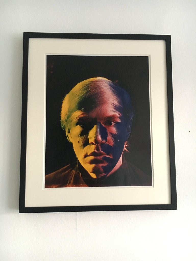 Andy Warhol Portraits by Philippe Halsman, Set of Four 9