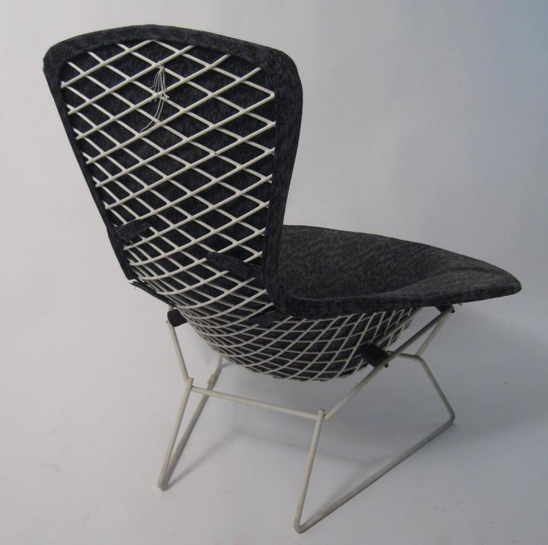 Harry Bertoia Bird Chair For Sale At 1stdibs