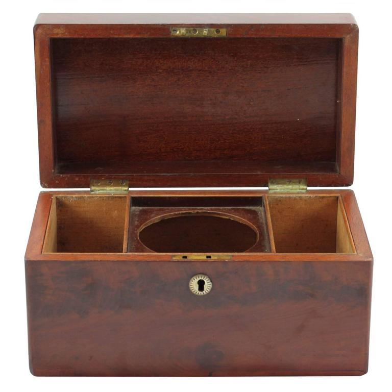Early 19th Century Regency Rosewood Tea Caddy For Sale 1