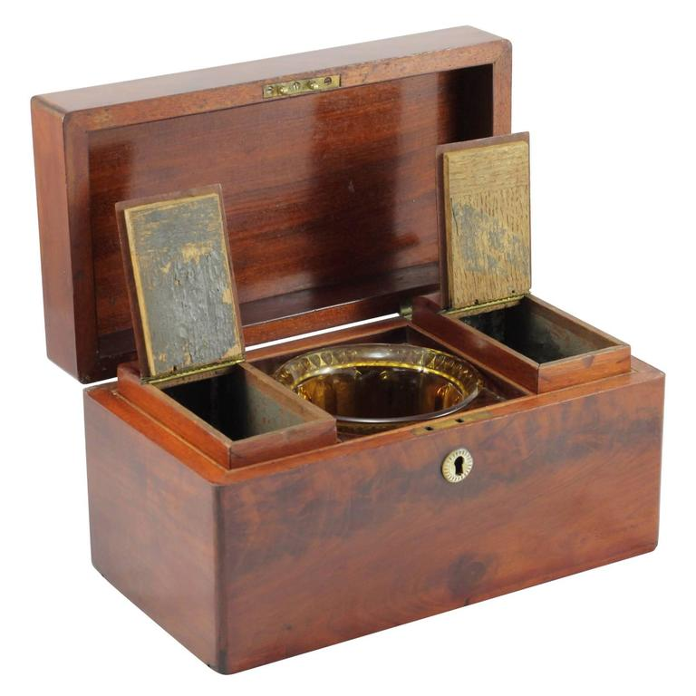 Early 19th Century Regency Rosewood Tea Caddy In Excellent Condition For Sale In Brisbane, Queensland