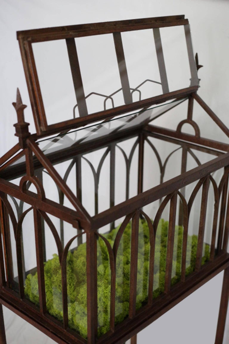 Turn Of The Century Antique Wrought Iron Wardian Case On