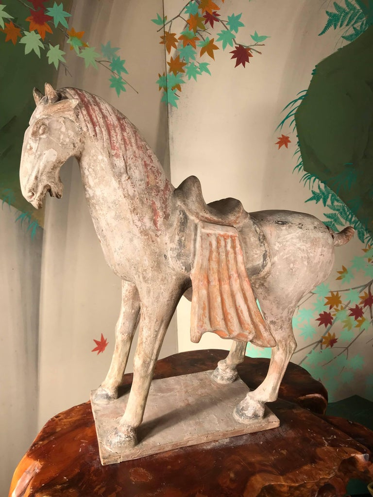 Fine Large Ancient Chinese Painted Pottery Horse, Tang Dynasty, 618 CE- 907 CE In Good Condition For Sale In Shelburne, VT
