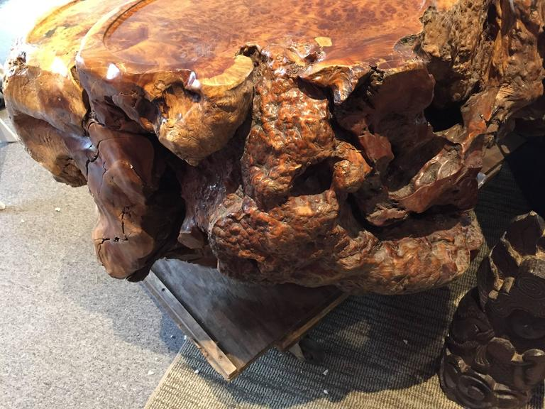Unique Burl wood Coffee Display Table Stunning Art to Showcase Your Treasures In Good Condition For Sale In Shelburne, VT
