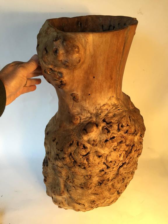 Big Beautiful Old Japanese Natural Organic Root Wood Burl