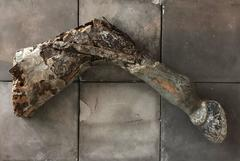 Antique horse leg from an American carousel