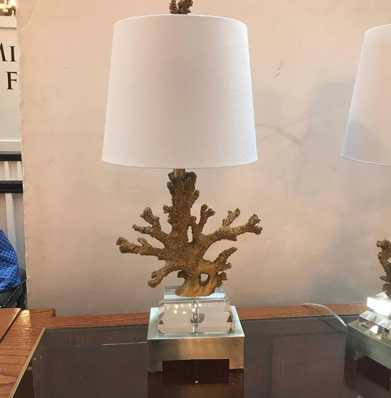 Brass Pair of Gilt Faux Coral and Lucite Lamps For Sale