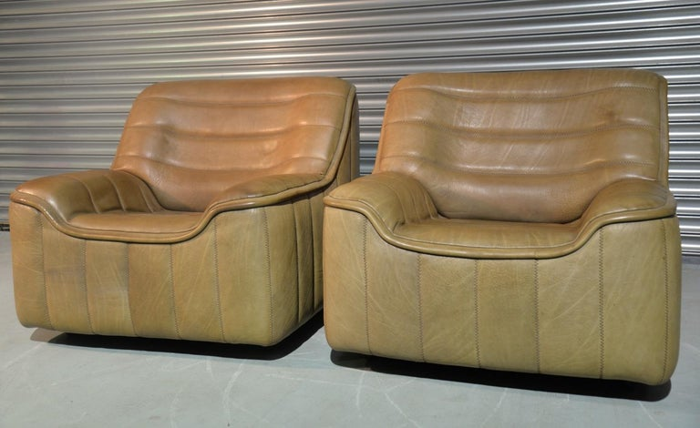 Mid-Century Modern Vintage De Sede DS 84 Armchairs, Switzerland, 1970s For Sale