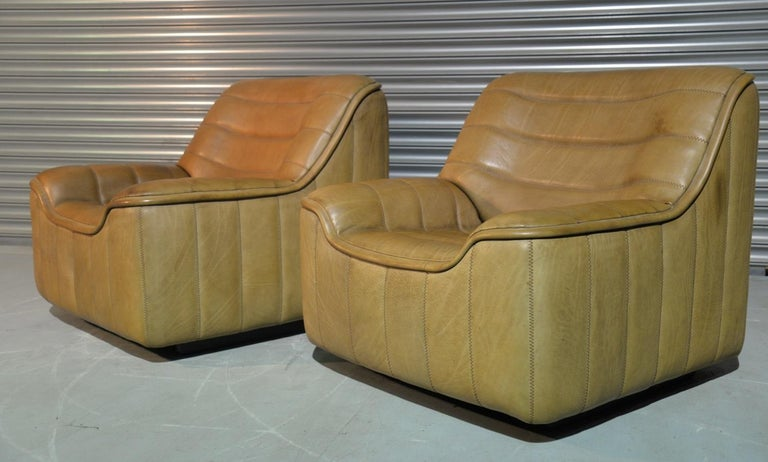 Swiss Vintage De Sede DS 84 Armchairs, Switzerland, 1970s For Sale