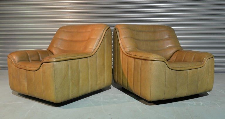 Vintage De Sede DS 84 Armchairs, Switzerland, 1970s For Sale 5
