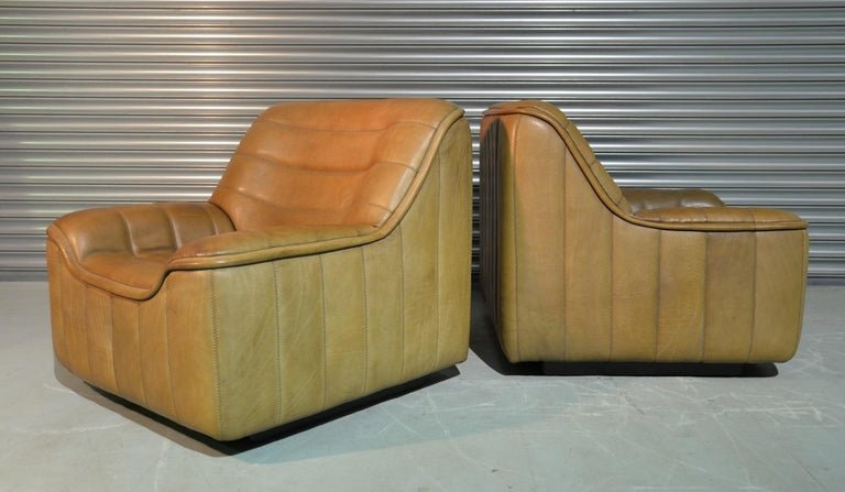 Vintage De Sede DS 84 Armchairs, Switzerland, 1970s For Sale 6
