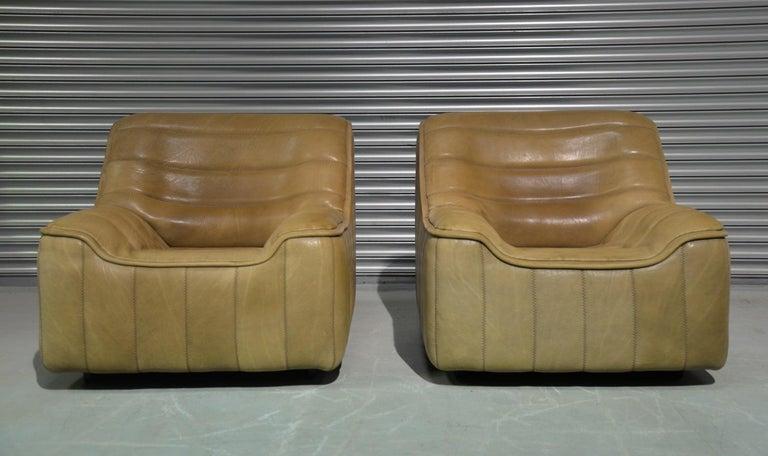 Mid-Century Modern Vintage De Sede DS 84 Armchairs, Switzerland, 1970s For Sale
