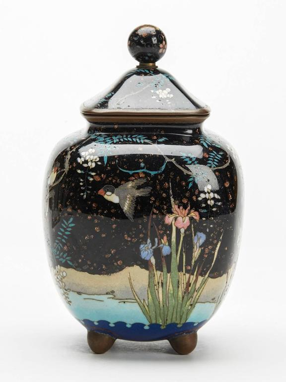 An antique Japanese lidded jar possibly a koro or tea caddy decorated with birds and wisteria alongside a pond dating from the Meiji period and 19th century. The body of the jar is decorated with birds set amidst flowering wisteria alongside a pond