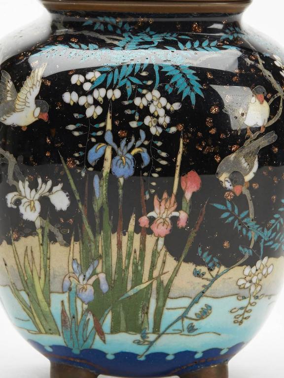 Japanese Meiji Cloisonne Lidded Jar , 19th Century For Sale 5