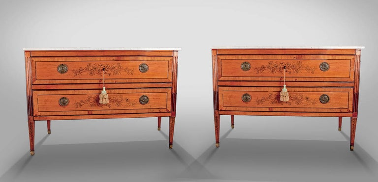 Pair of 18th Century Continental European Commodes In Excellent Condition For Sale In Pasadena, CA