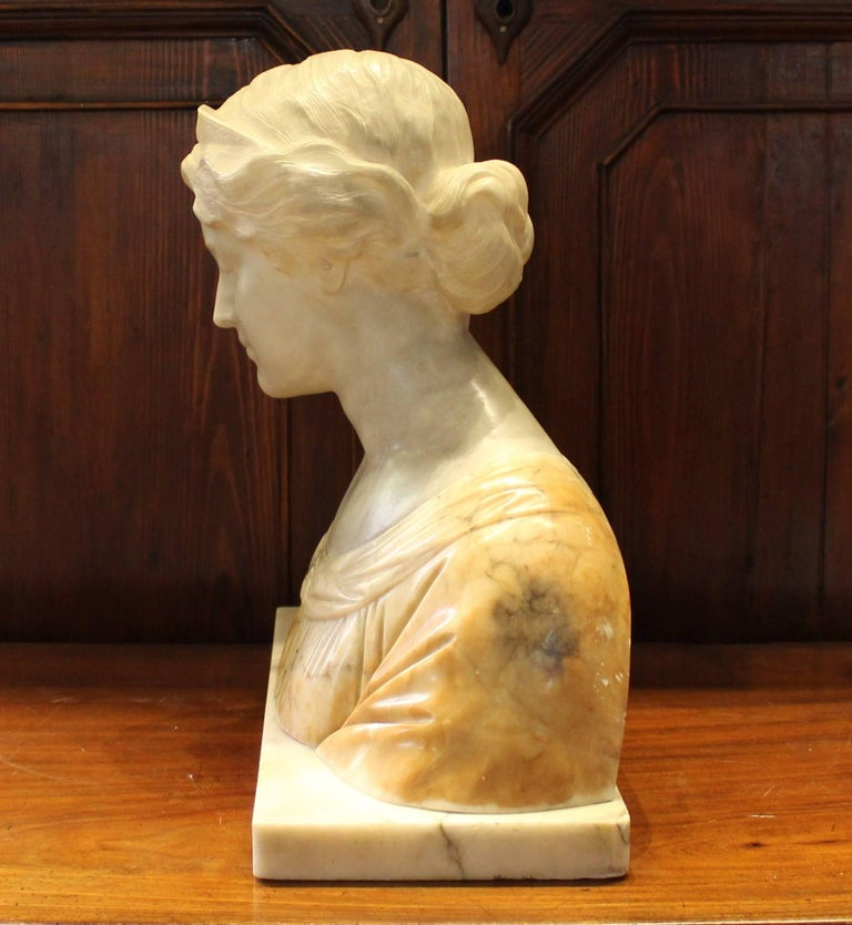 19th Century Italian Alabaster Bust For Sale 1