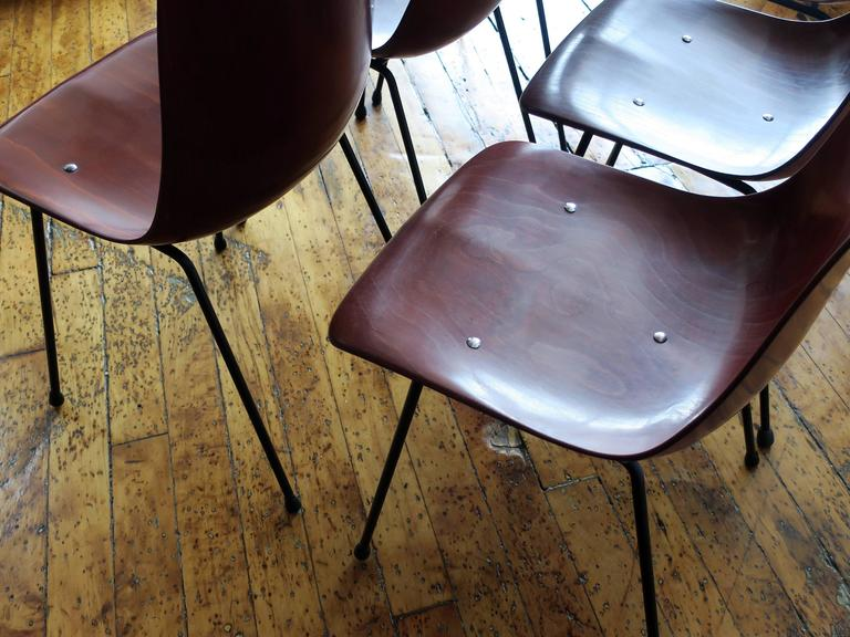 Steel Pierre Paulin Set of Six CM131 Dining Chairs, circa 1954 For Sale