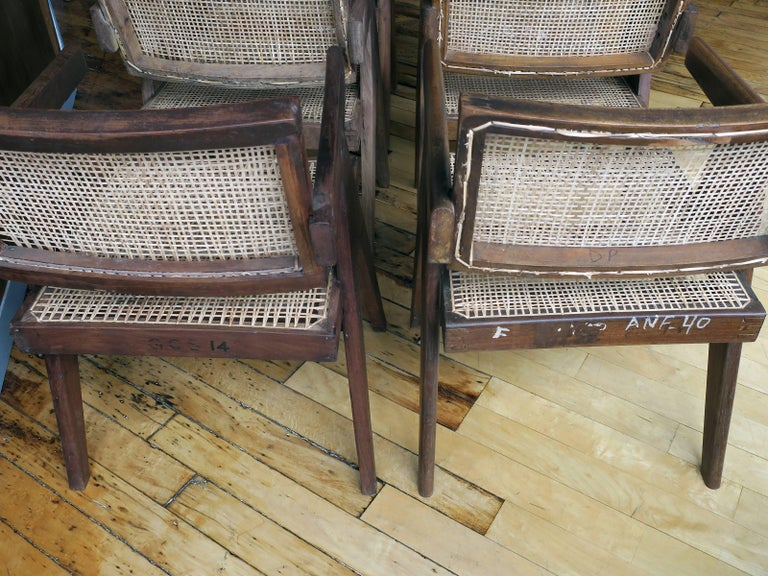 Pierre Jeanneret Grouping of Six Floating Back Armchairs 7