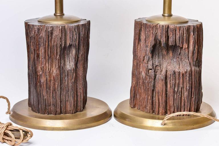 Nice pair of fossil lamps ( from Borneo), with iron hats , perfect in a mountain home - O/7566- 7567 - 7678 - I offer packing in wooden case.