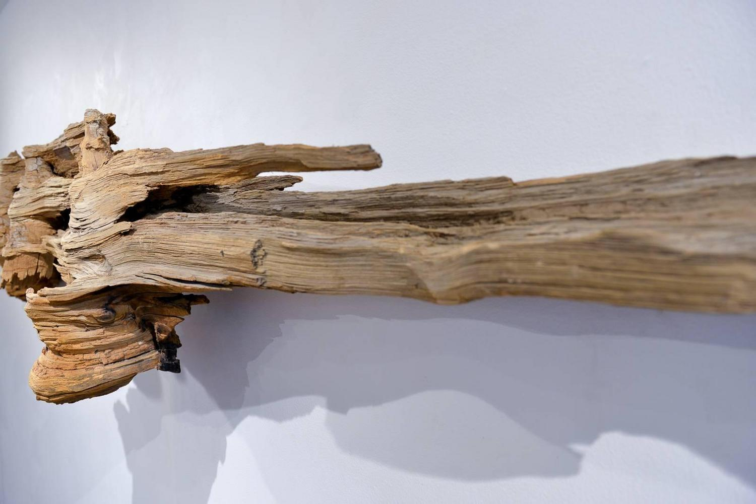 Large organic driftwood wall hanging for sale at 1stdibs for Driftwood wall