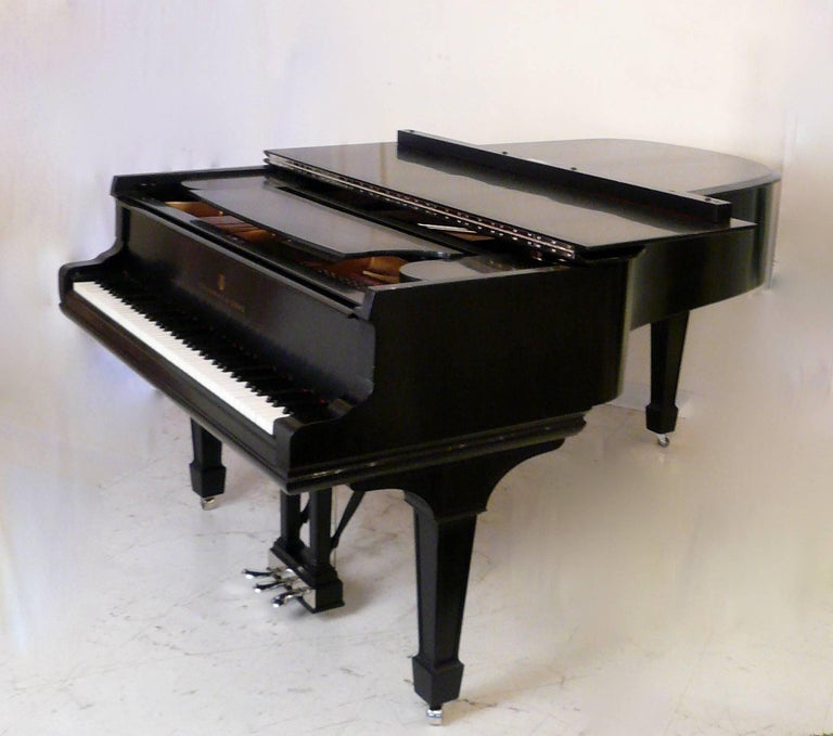 Hepplewhite Steinway and Sons Ebony Grand Piano, Model