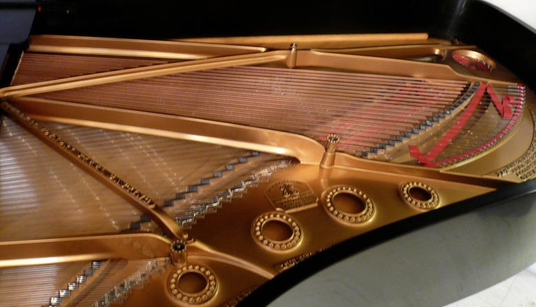 Late 19th Century Steinway and Sons Ebony Grand Piano, Model