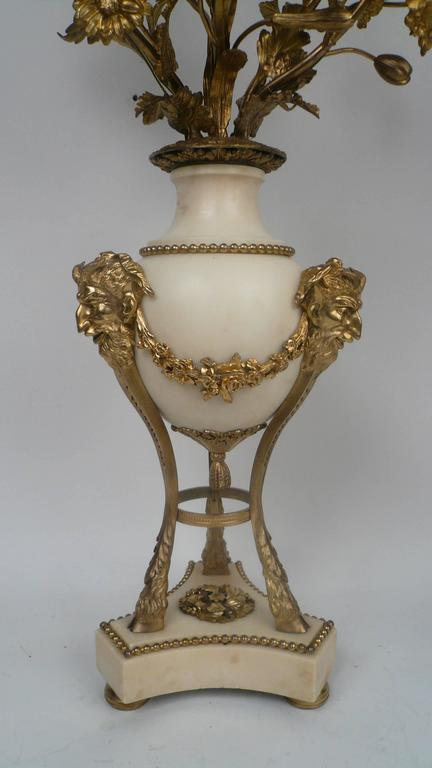 Large Pair of Louis XVI Style Gilt Bronze and Marble Candelabra In Excellent Condition For Sale In Pittsburgh, PA