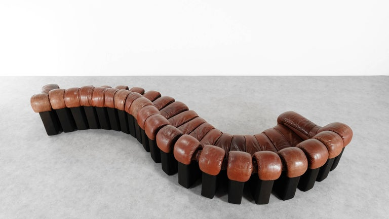 Late 20th Century De Sede Ds 600 Sofa by Ueli Berger and Riva 1972, Chocolate Leather 20 Elements For Sale