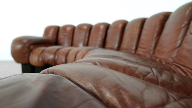 De Sede Ds 600 Sofa by Ueli Berger and Riva 1972, Chocolate Leather 20 Elements For Sale 6